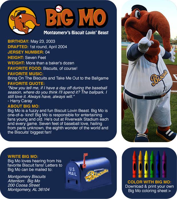 Meet Big Mo | Montgomery Biscuits Community